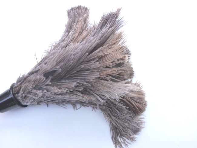 staubwedel strau enfeder mit holz stiel staubwischer staub putzen entstauben f r haus und garten. Black Bedroom Furniture Sets. Home Design Ideas